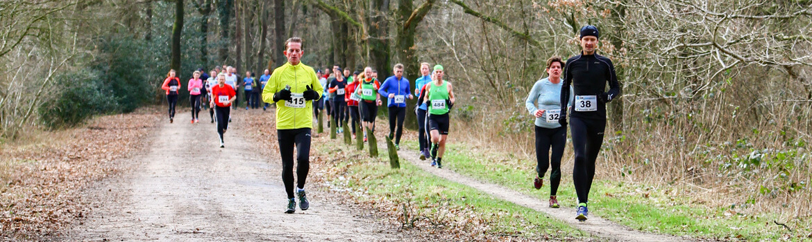 Hunebedloop Canicross Havelte 2017