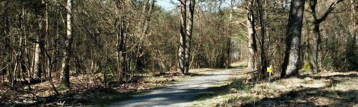 Marathon Drents-Friese Wold